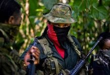 Ejército de Liberación Nacional - Democracia en Venezuela