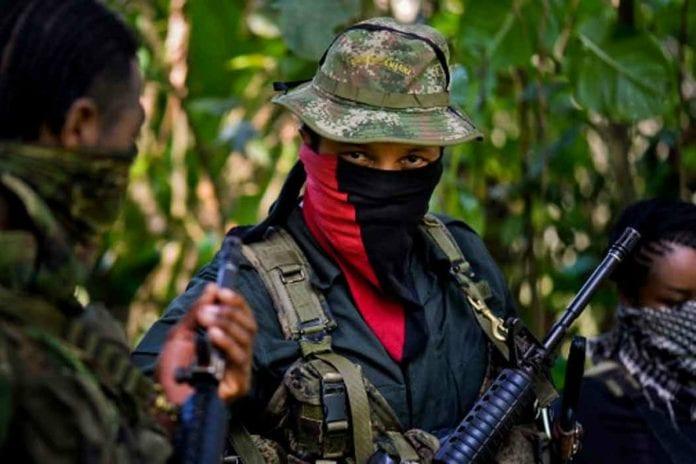 Ejército de Liberación Nacional - Democracia en Venezuela - guerrilleros en Venezuela