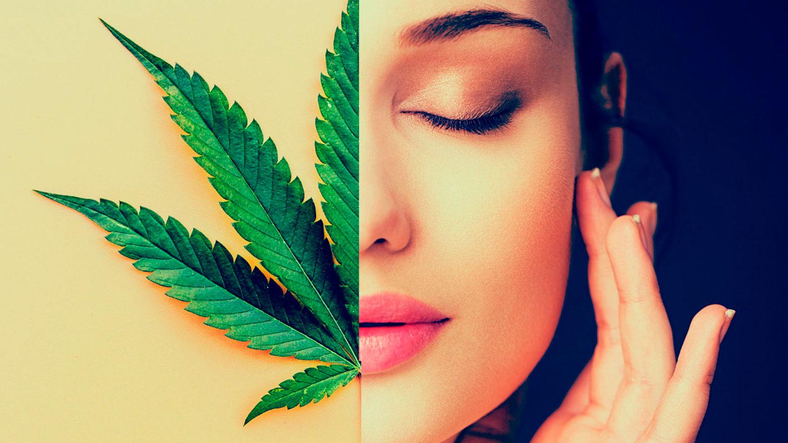 """Resultado de imagen para Cannabis, nueva """"droga"""" para la piel"""