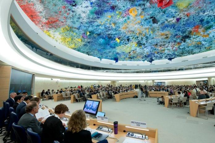 Consejo de Derechos Humanos de la ONU - piechowski -