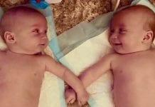 Dos gemelos