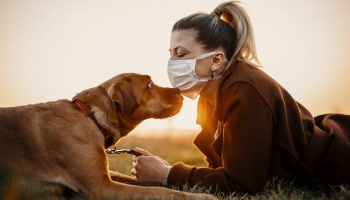 Cuidar mascotas cuarentena