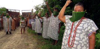 Provea: Supervivencia de los pueblos indígenas en riesgo por covid-19