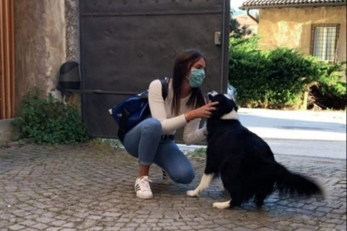 conmovedor reencuentro entre una chica y su perro