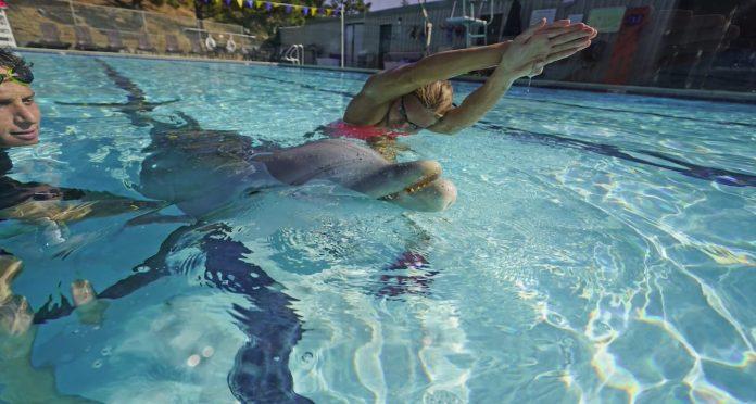 Delfín, delfines