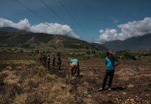 producción agrícola en Venezuela Combustible agrícolas